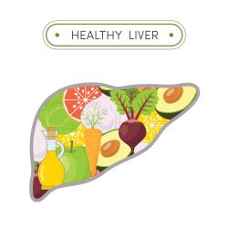 Здраве за черния дроб