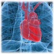 Сърдечни проблеми (91)