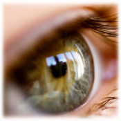 Зрение (15)