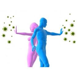 Обучение – Имунна системa