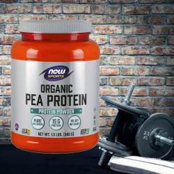 Какво различава суроватъчния, яйчния, телешкия и растителния протеин